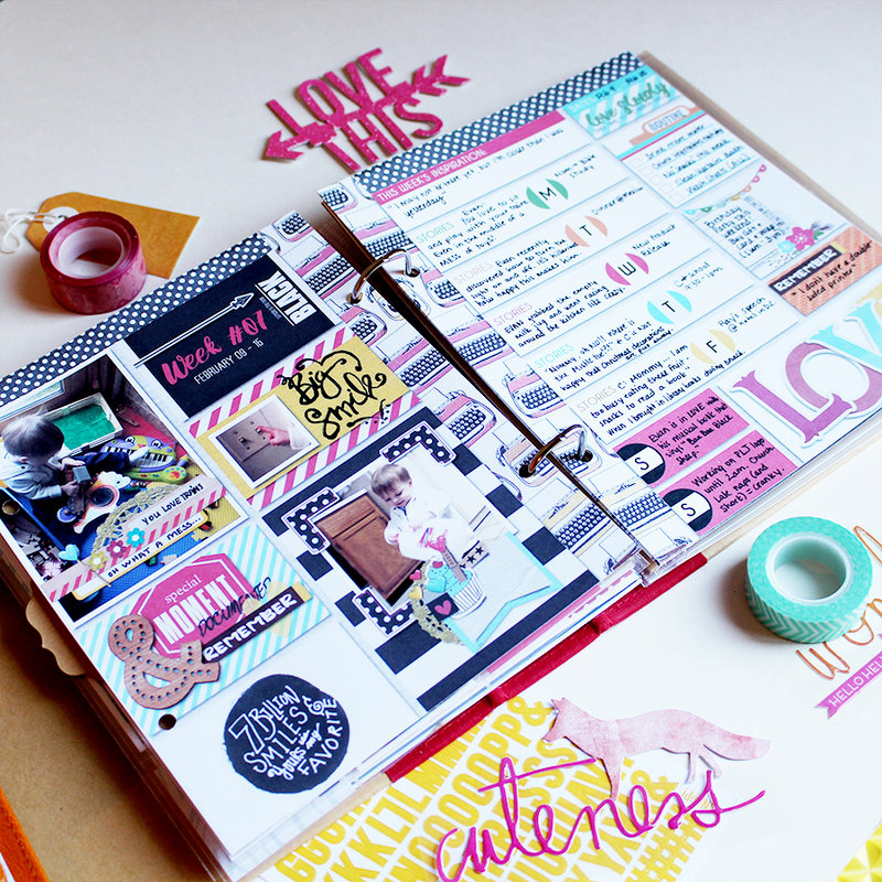 February Photo and Story Pocket Planners: 4 Album Sizes/Styles Read more at http://www.scrapbook.com/gallery/image/layout/528870