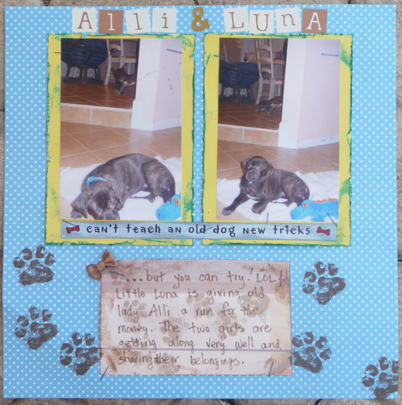 Alli & Luna