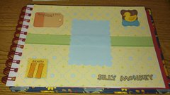 SIL baby book- 11 mths