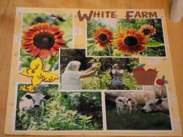White (family) Farm