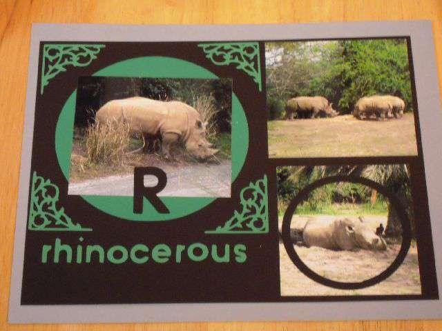 R for Rhino