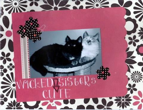 Wicked Cute Sisters