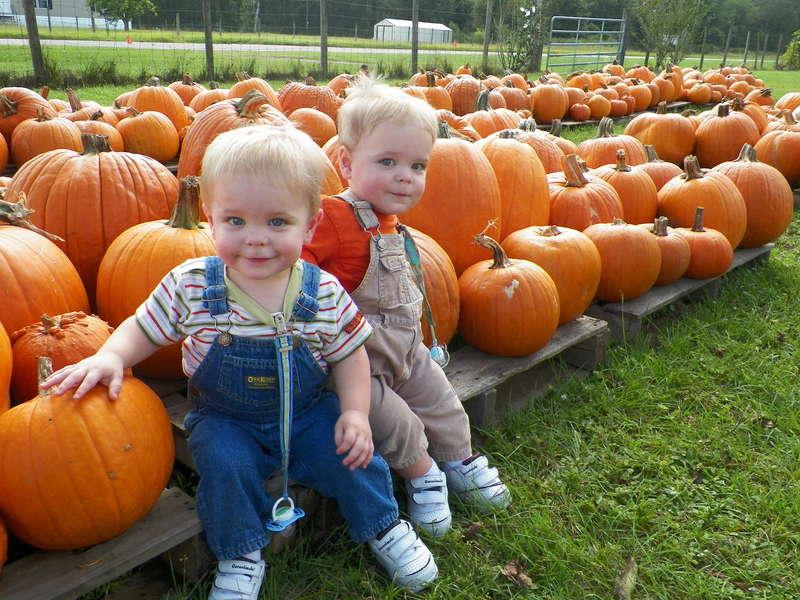 Sweet Pumpkins