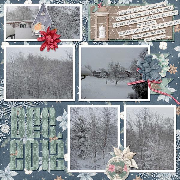 2012-12-09 Snow cap_2018DecTemps1
