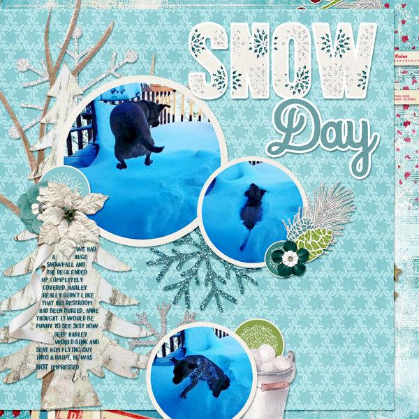 2018-01-23 Snow Day! cap_snowflakekissestemps3