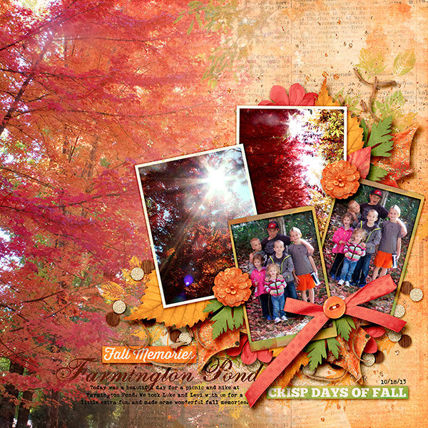 Fall in Farmington