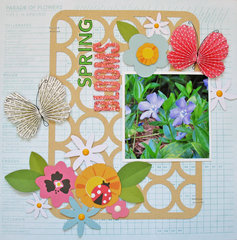 Spring Blooms - Pebbles