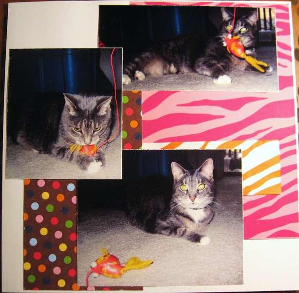 Kane's album - page 3