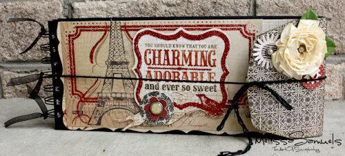 Charming Mini Album