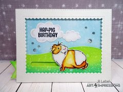 Hap-Pig Birthday
