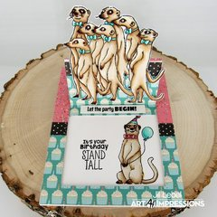 Meerkat Surprise Pop-Out Card