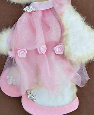 Little Princess Tear Bear