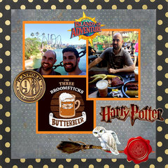 MY SONS AT ISLAND OF ADVENTURE - HARRY POTTER PARK