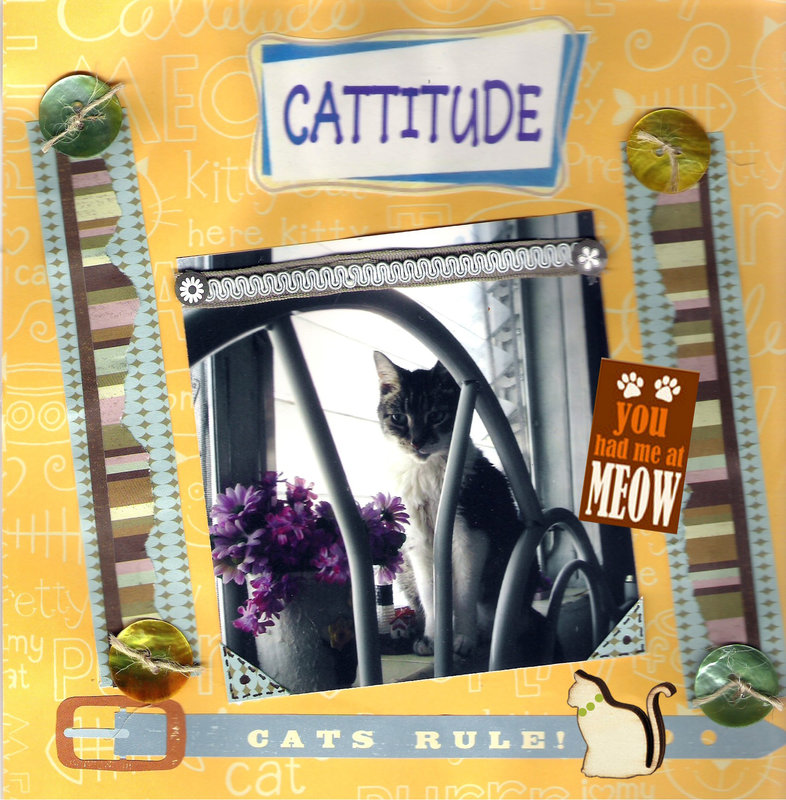 CATTITUDE