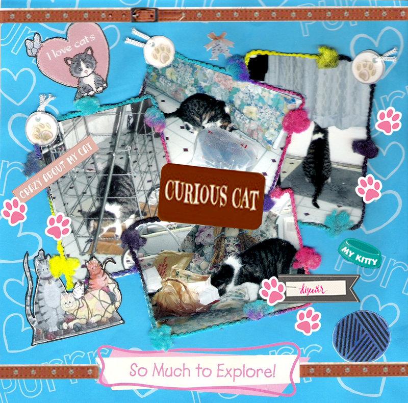 COCO - CURIOUS CAT (2007)