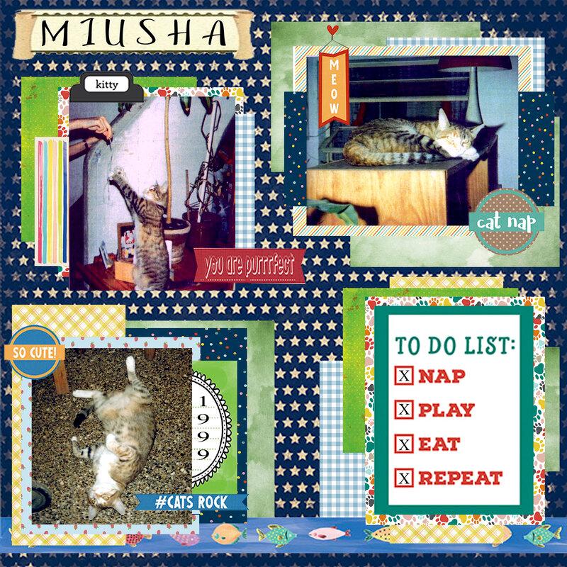 MIUSHA 2