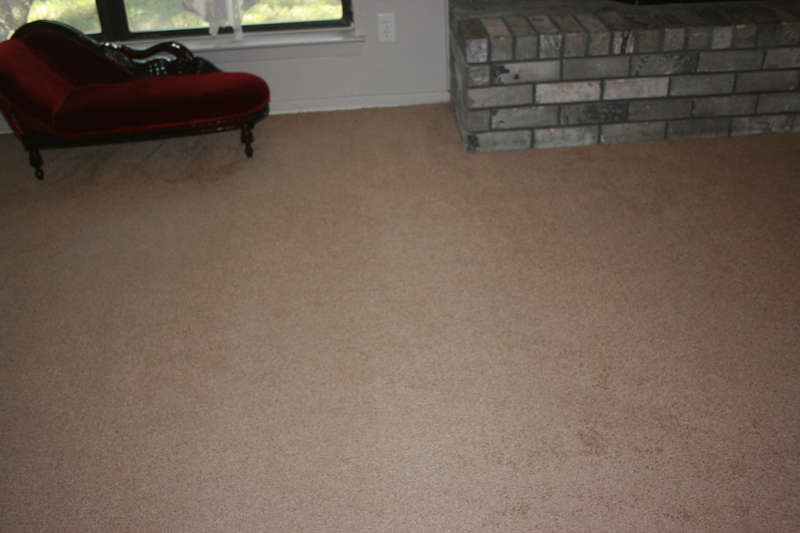 new nuetral carpet so nic and c,ean