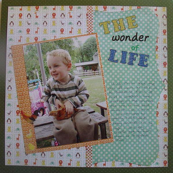 The Wonder of Life
