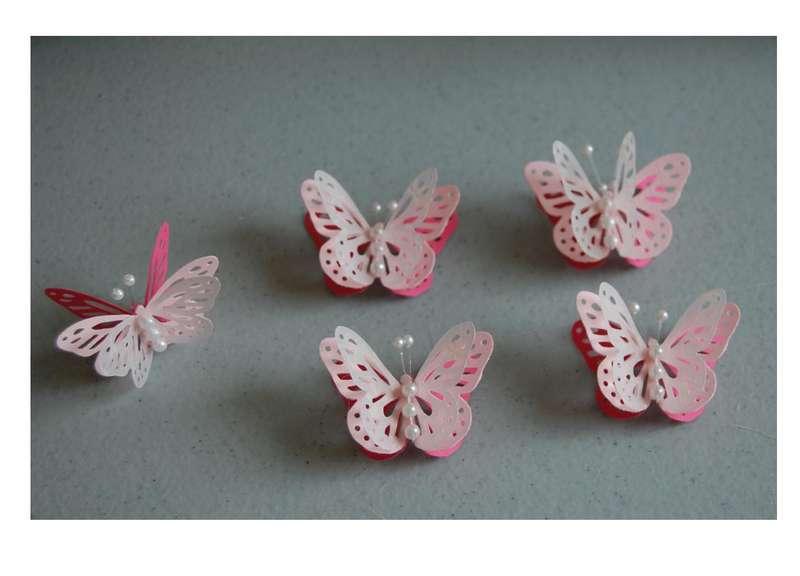 Handmade Butterfly Swap