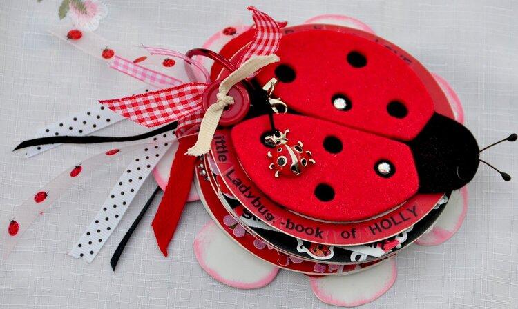 "mini album ""Little Ladybug book of Holly"""