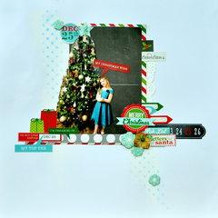 Wish List *MCS Main Kit Dec 2013*