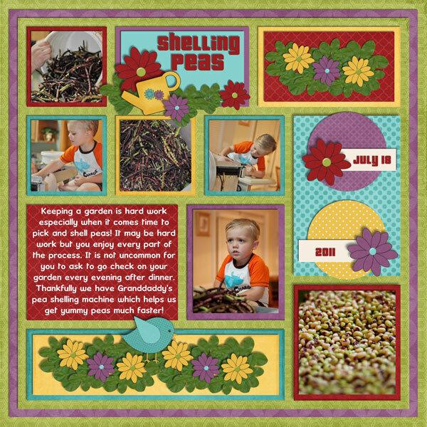 Picking & Shelling Peas