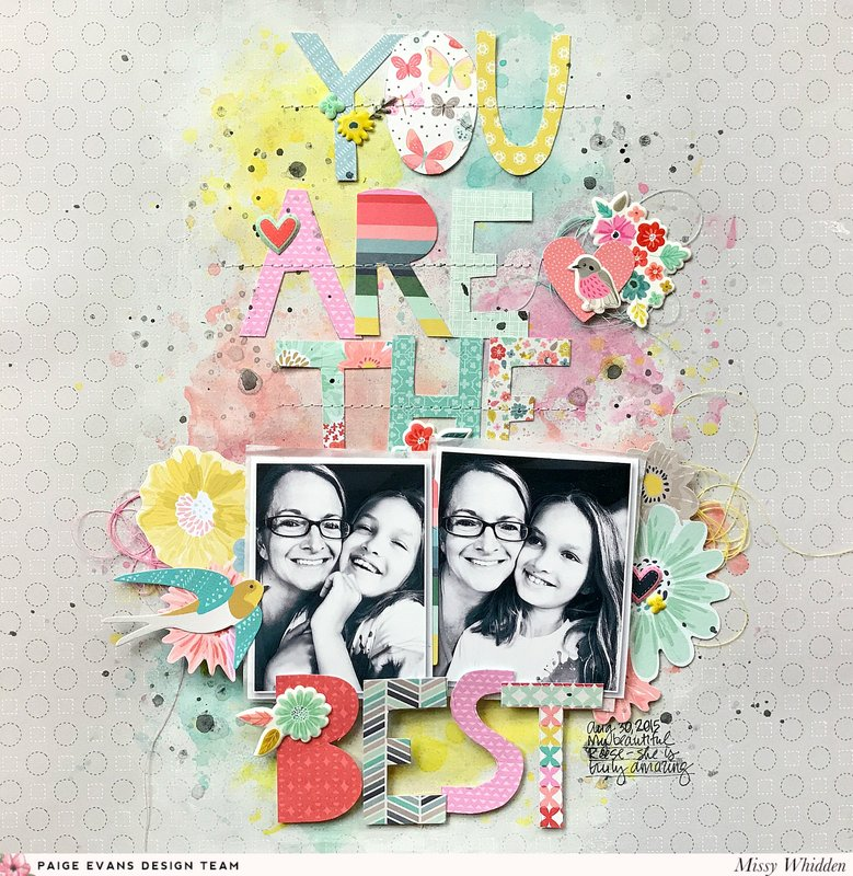 You Are The Best *Paige Evans DT*