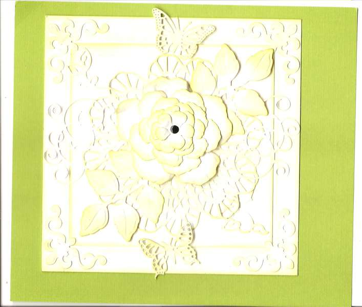 Special Occasion - Cased Card