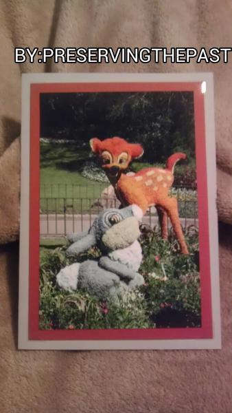 Photo Card -- Epcot Flower and Garden Festival