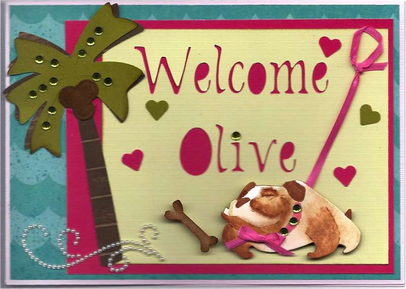 Card for Olive