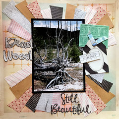 Dead Wood - Beauty