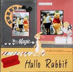 Hallo Rabbit!