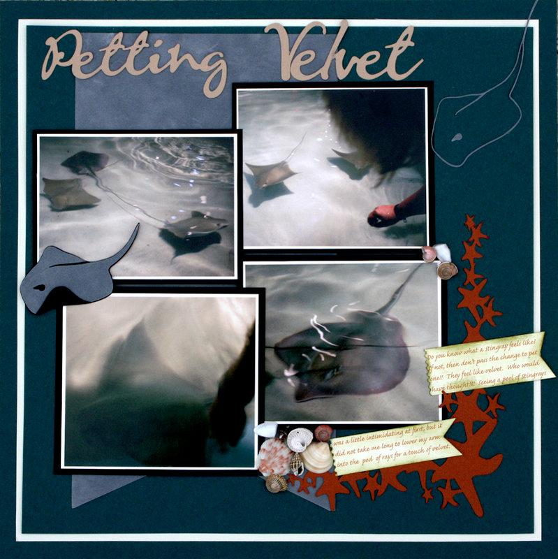 Petting Velvet