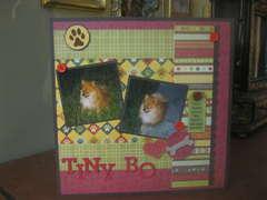Tiny Bo