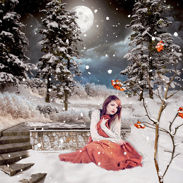 Winter scenery overlays by Eena Creation