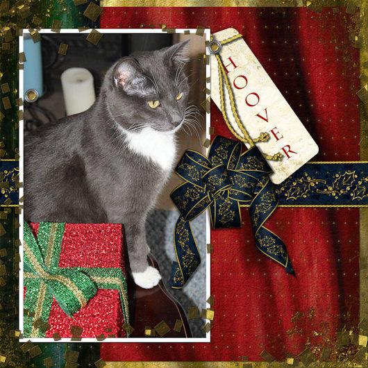 Christmas Hoover