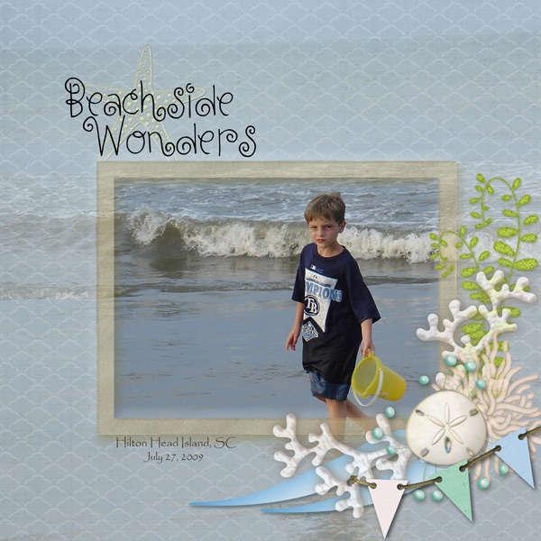 Beach Wonders