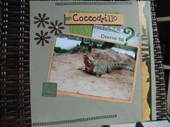 Kenya album: crocodile