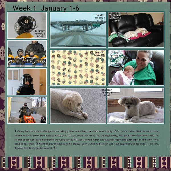 P365-2013-Week1