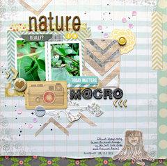 Nature in Macro