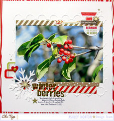 Winter Berries ***Chic Tags***