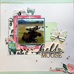 Hello Moose