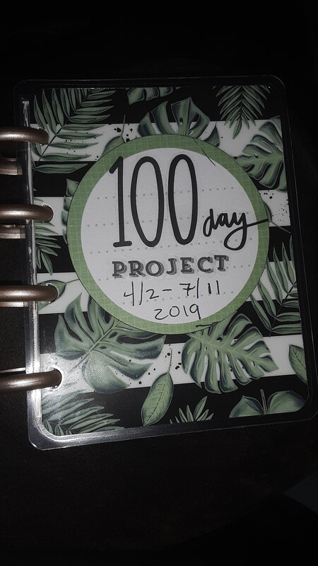 The 100 Day Project Cover