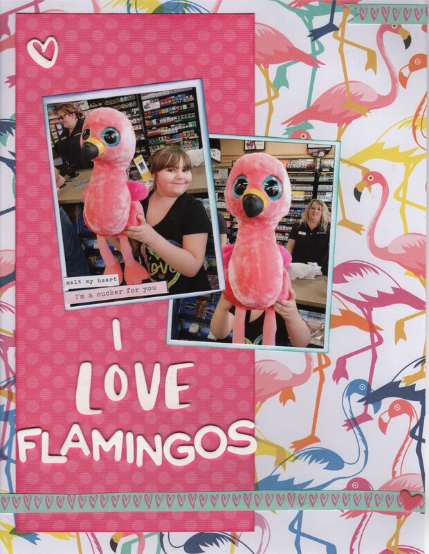 I Love Flamingos