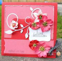 Card with bookmark **Petaloo**