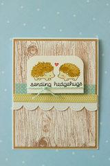 Sending Hedgehugs!