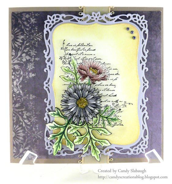 SCRIPT ASTER CARD
