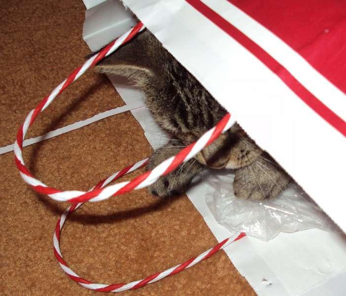 Santa's Helper (Dec POD#9)