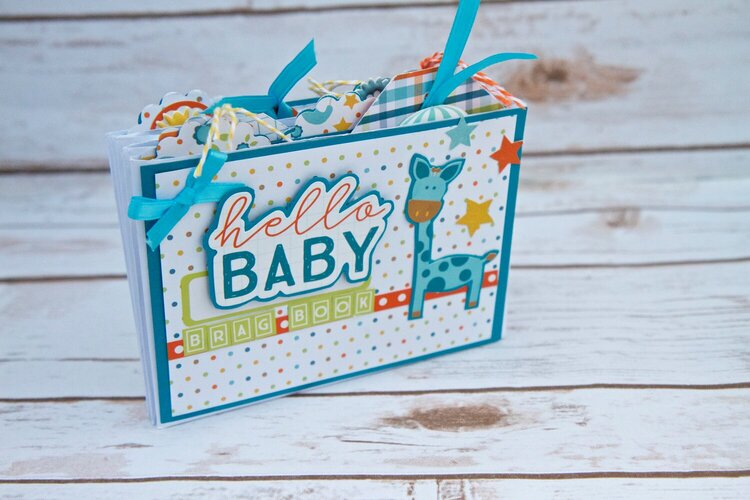 Hello Baby Boy Mini Album