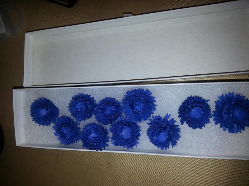Phillis's beautiful paper flowers!!